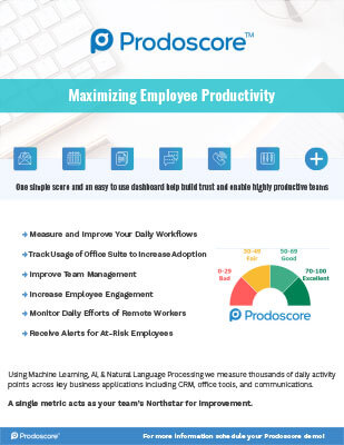Maximizing Employee Productivity Partner Sheet